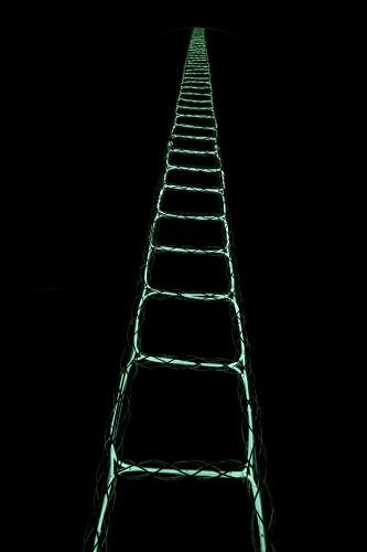 草間彌生《天国への梯子》2012年